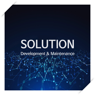 SOLUTION Development & Maintenance